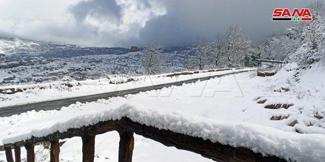 الأجواء المناخية تميل للاستقرار وتوقعات بمنخفض جوي جديد الأربعاء القادم محمل بالهطلات المطرية والثلجية