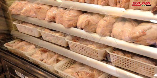 السورية للتجارة في حماة: تخزين كميات من الفروج لطرحها في الأسواق خلال فترة عيد الأضحى