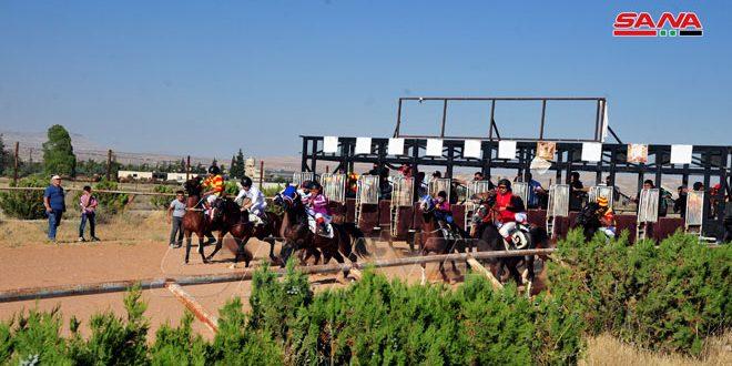 ندية وإثارة في سباق السرعة الدوري الرابع للخيول العربية الأصيلة
