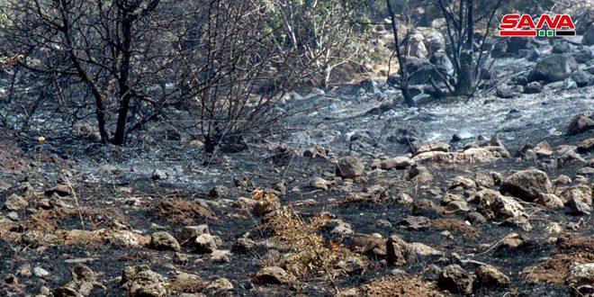 إخماد حريق في بساتين زراعية بين بلدتي سليم وقنوات بالسويداء